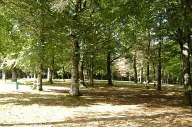 1-Camping-l-Oree-du-Bois-Baud-Morbihan-Bretagne-Sud Camping-l-Oree-du-Bois