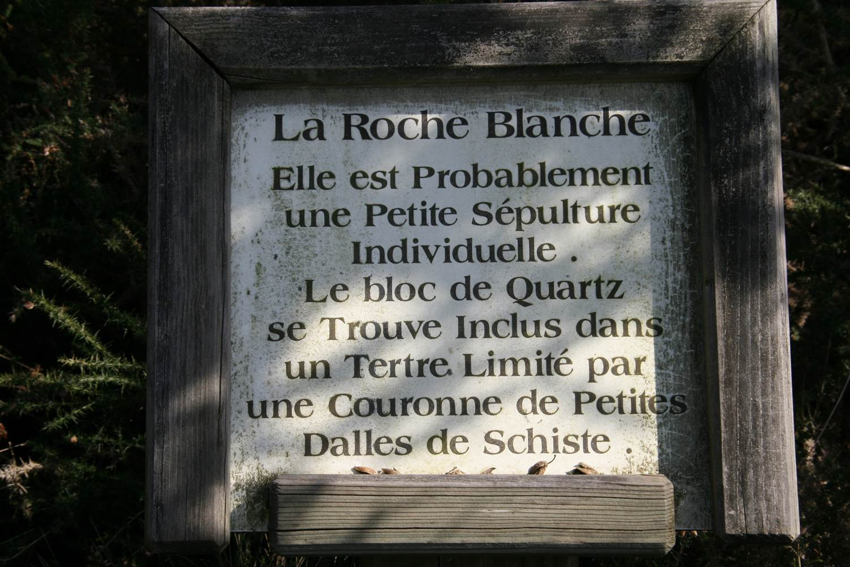 Roche blanche - Monteneuf - Morbihan Bretagne sud © CDT56 - P GOUEZIN