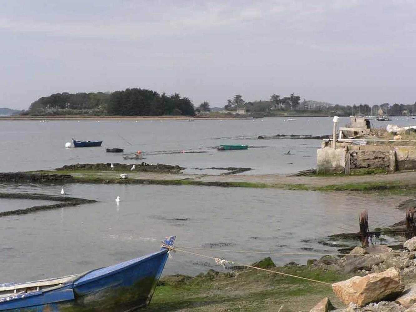 Ostréiculture-Captain-Marée-Séné-Golfe-du-Morbihan-Bretagne sud © GMVT