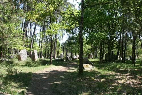 Forêt du Varqués