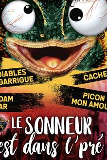 Festival Le Sonneur est dans l'pré