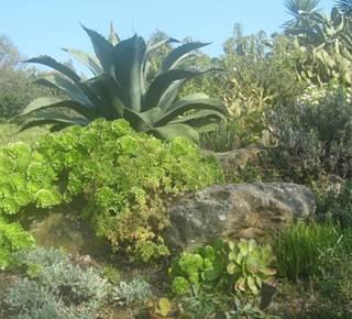 Jardin Botanique La Laurisylve