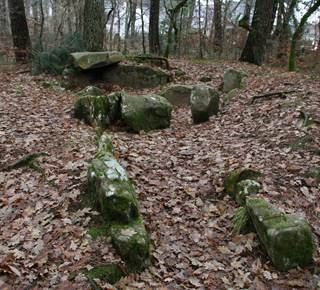 Bois de Kerzuc