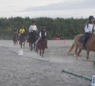 Maestria Equitation