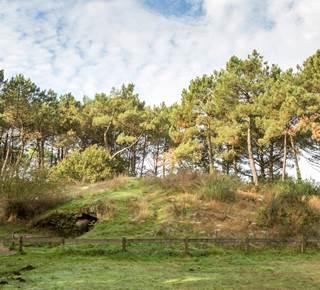 Tumulus du Rocher à Kernours