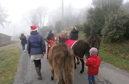 Balade féerique de Noël à  Kerant'ânes
