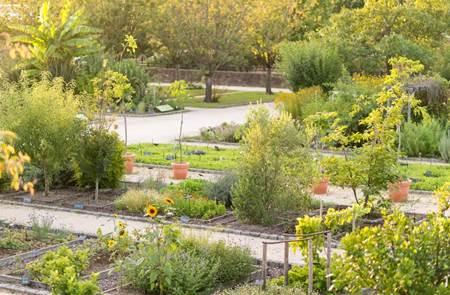 Expériences Bien-être au Jardin Botanique Yves Rocher ou à La Grée des Landes