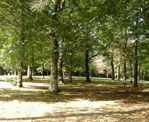 1-Camping-l-Oree-du-Bois-Baud-Morbihan-Bretagne-Sud © Camping-l-Oree-du-Bois