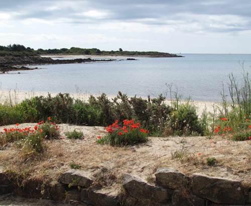Maison des salines - 4 - La Trinité-sur-Mer - Morbihan Bretagne Sud © Maison des salines
